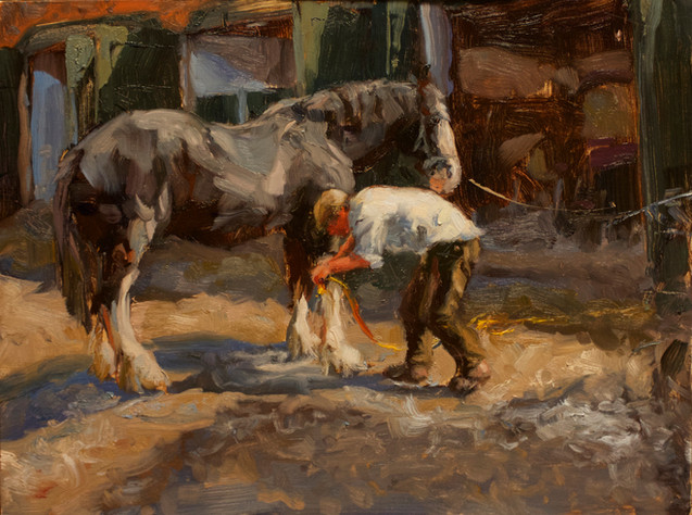 Horse Washer