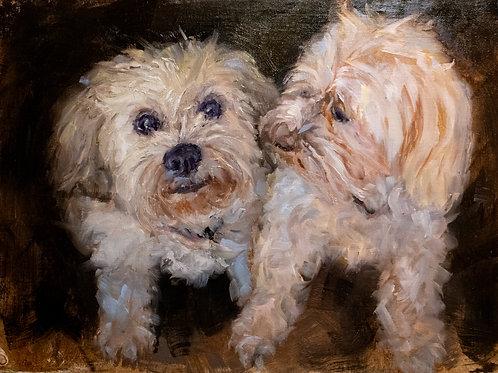 Izzy and Gabby