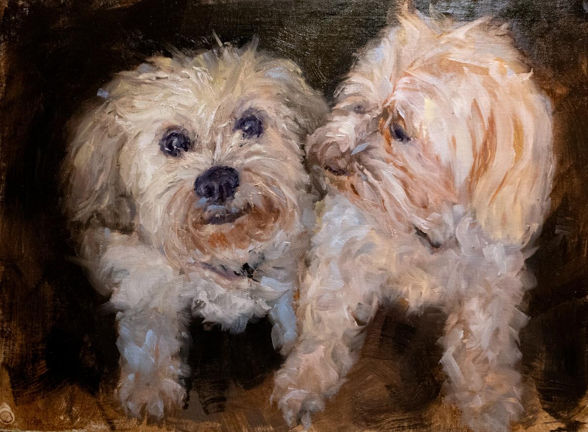 Izzy & Gabby