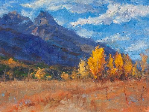 Yellow Trees Blue Mountain