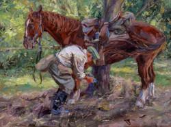 Horse Hoof Cleaning