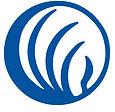 nami-logo-blue (1).jpg