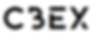 Logo CBEX 2.png
