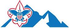 BSA BMC Logo.jpg