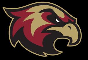 SB-Ice-Hawks-Logo-resized_medium.png