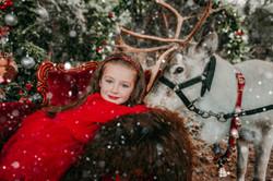 Real Reindeer