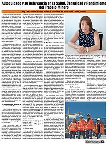 Página-29-Rev-Mundo-Minero.png