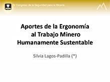 Presentación_Prevemin_2013.png