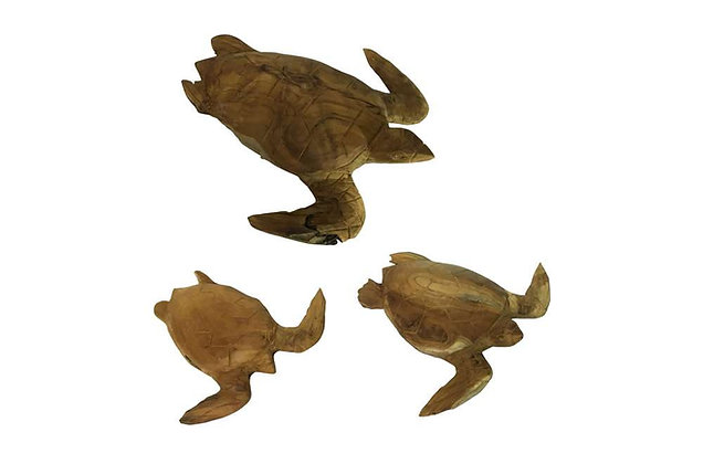 Teak Sea Turtles