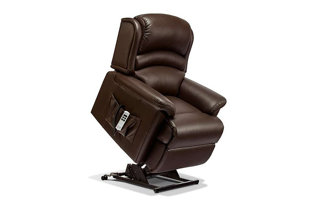Warminster Leather Standard Rise Care Recliner Chair