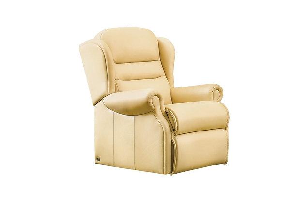 Vienna Leather Standard Armchair