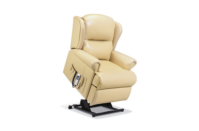 Monty Leather Small Lift & Rise Care Recliner Chair