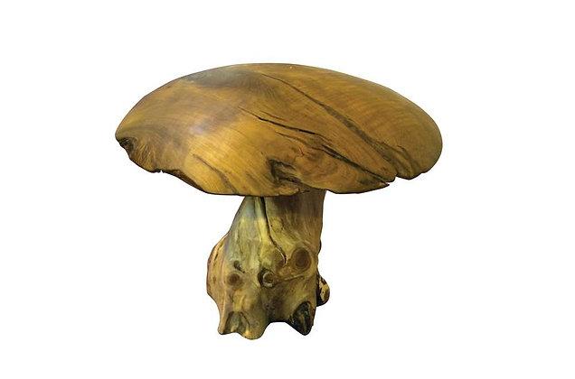 Teak Mushroom - Extra Large