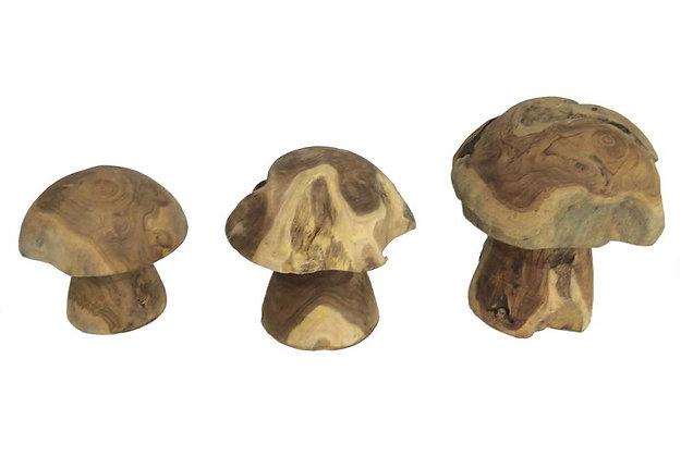 Teak Mushrooms - Set of 3