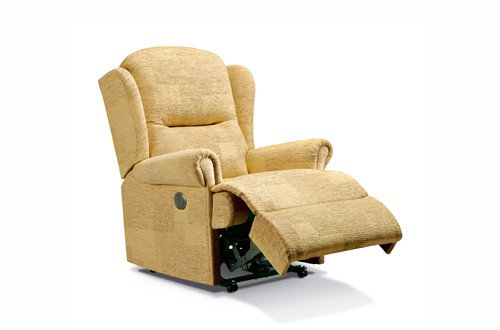 Monty Standard Recliner Chair