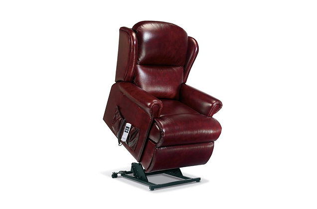 Monty Leather Standard Lift & Rise Care Recliner Chair