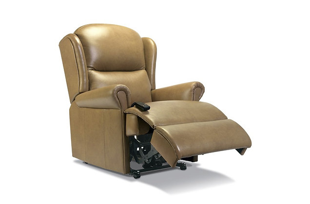Monty Leather Standard Recliner Chair