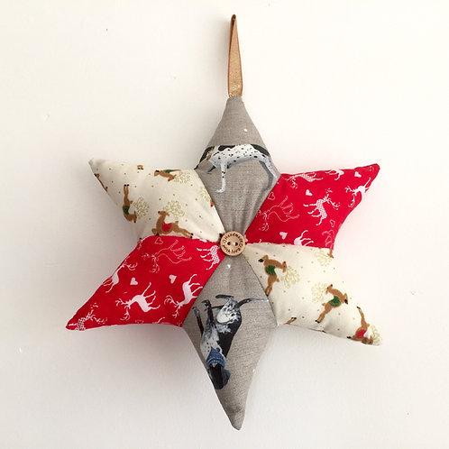 Pointer Christmas Star