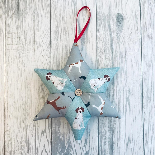 Pointer Blue and Grey Star