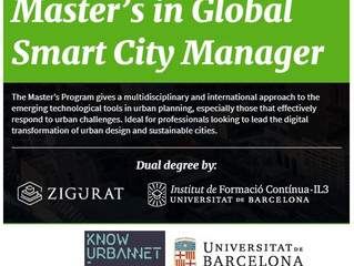 Teaching Future Smart Cities Managers