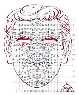 réflexologie faciale dien chan saint alban et montauban
