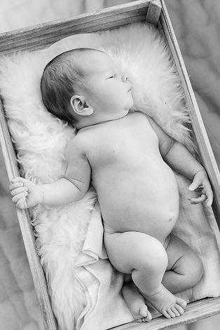 newborn_NETTI4.jpg