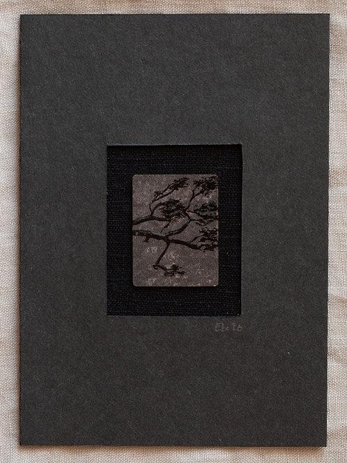 BANKOKU ばんこ Miniaturbild