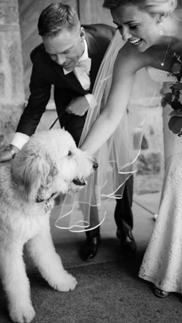 harvey-brooke-wedding.PNG