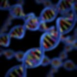 DNA-genetic-helix-genome.jpg