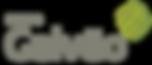 logo-galvao.png