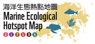 Only 16 per cent of HK's marine ecological hotspots are protected and managed