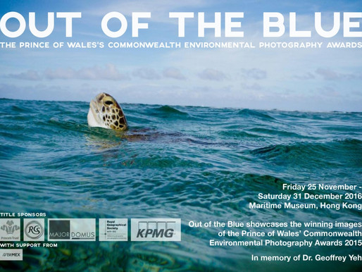 'Out of the Blue' Photographic Exhibition (25 November to 31 December 2016)