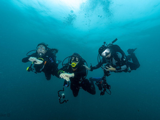 SCDC is please to announce it will be running its popular Sports Diver course in August!