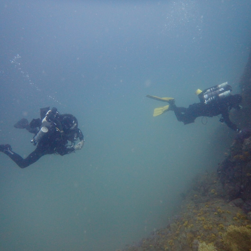 DIVING Victor Rock and one Foot Rock 20160828 (11)