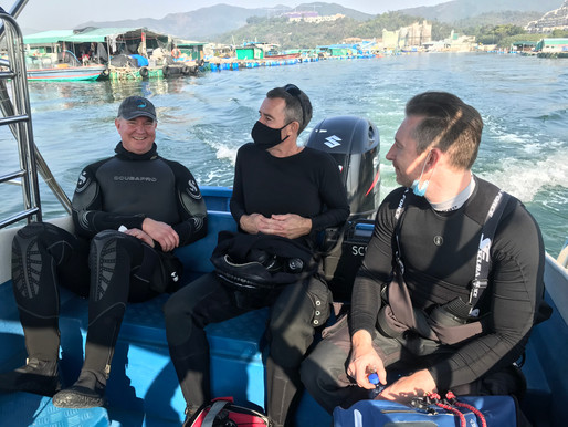 Welcome to Year of the Ox! - Feb 20, 2021 Dive Report
