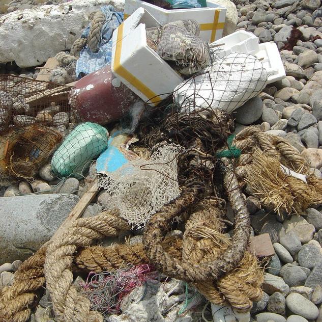 BEACH CLEAN UP 09_037