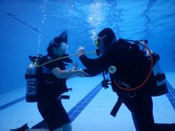Ocean diver course 2016_34