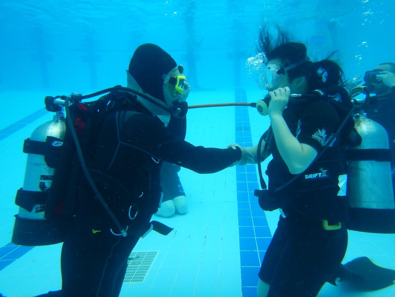Ocean diver course 2016_31