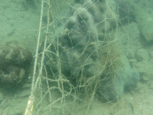 Workshop on Abandoned Fishing Nets and Diving Safety