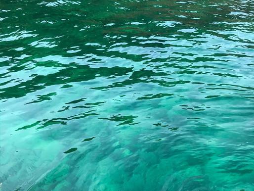San Mun Tsai Small Boat Dive Report - Feb 22, 2020