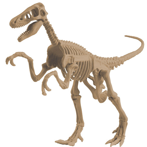 Animal Planet - Dig It! Velociraptor