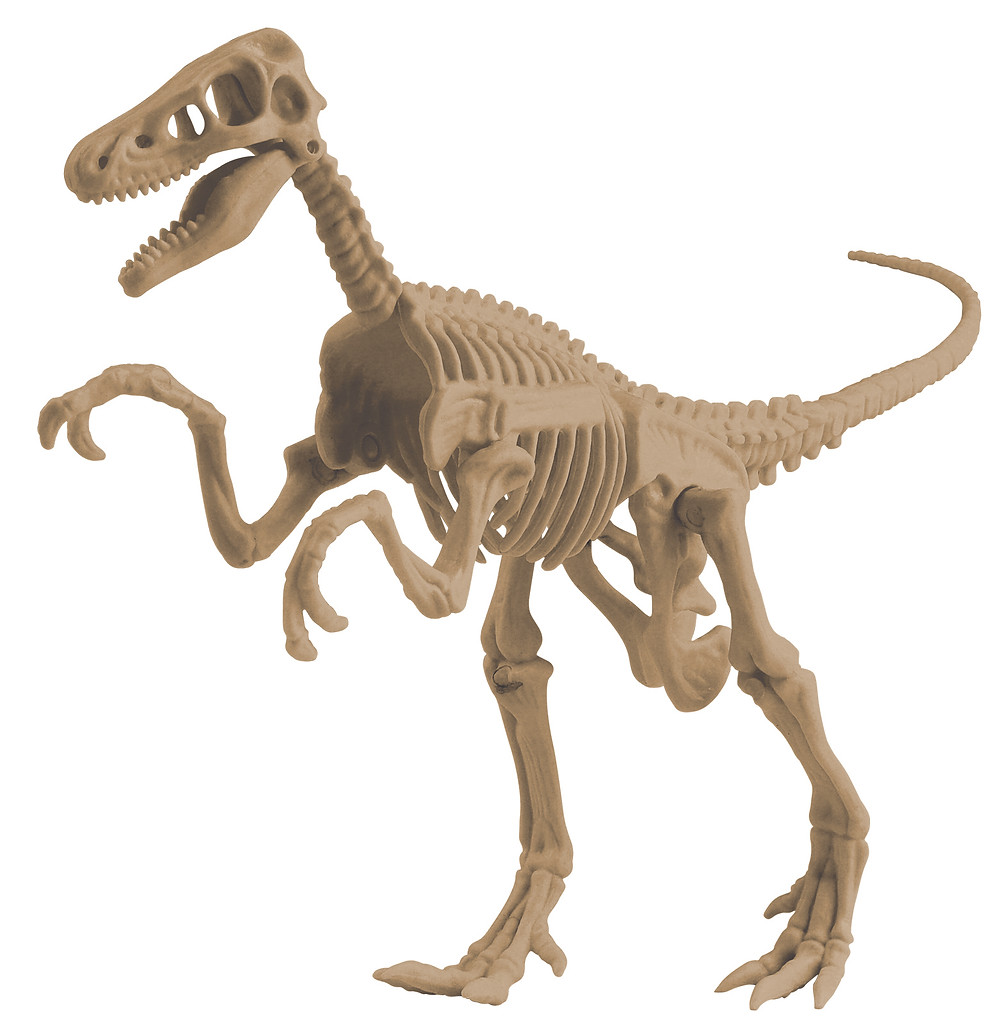 Animal Planet - Dig It - Velociraptor