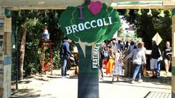 Broccoli Festival