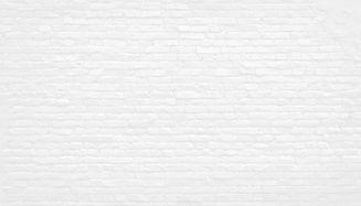 white-brick-bg_edited.jpg