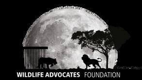 Wildlife Advocates Foundation