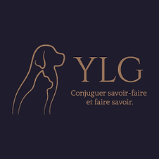 YLG_256x256.png