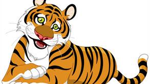 Dessine moi un tigre