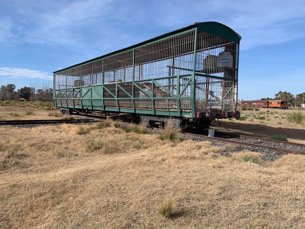 A train wagon the deserted pampa (1).jpg