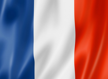 France Mission Update-Domestic Violence Counseling