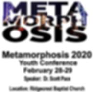 Meta 2020.PNG